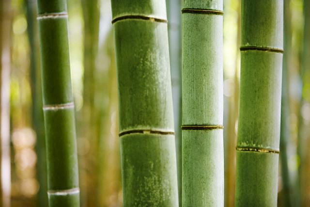 состав бамбукового одеяла